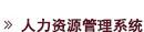 金阳成HR系统